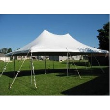 20' x 30' Staked Tent
