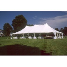 30' x 60' Staked Tent